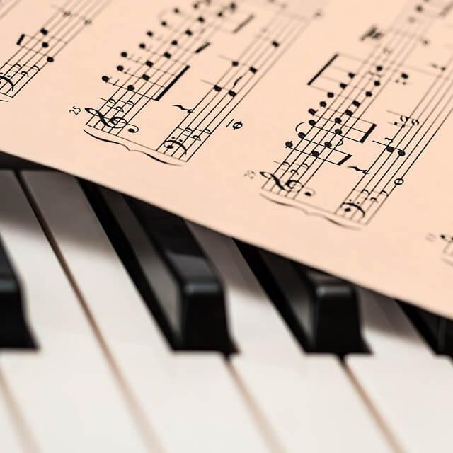 спеціалізація - теорія музики